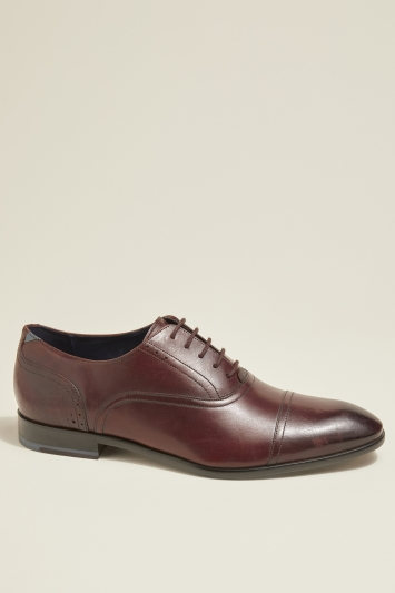 Ted Baker Cricass Brown Toecap Oxford
